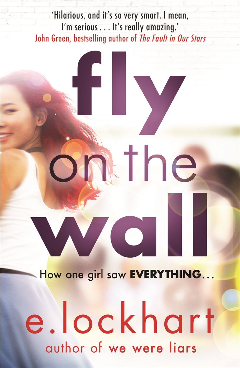 Fly on the Wall – picture