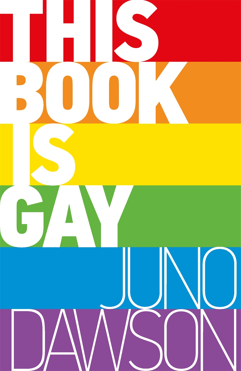 This Book is Gay – picture